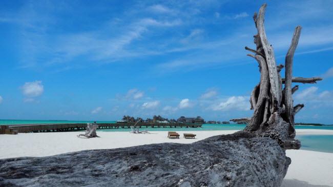Soneva Jani – khu nghỉ dưỡng đẳng cấp tại Maldives - Ảnh 3