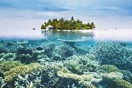 Khám phá những điều thú vị tại vùng biển xanh tuyệt diệu Maldives