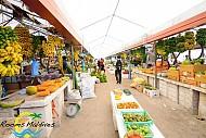 Kinh nghiệm mua sắm khi đi du lịch Maldives