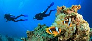 Lặn biển – trải nghiệm thú vị trong chương trình Maldives