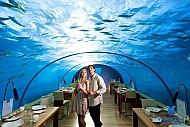 Nhà Hàng Trong Lòng Đại Dương Ở Maldives