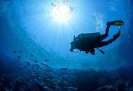 Top những hoạt động dưới nước tại Maldives bạn nên thử