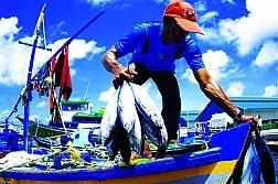Cùng trải nghiệm nhiều điều thú vị tại lễ hội ngư dân ở Maldives