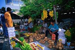 Đại Lộ Boduthakurufaanu Magu - Chợ Hoa Qủa Male