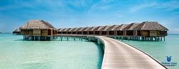 Hành Trình Tới Maldives Từ Hồ Chí Minh