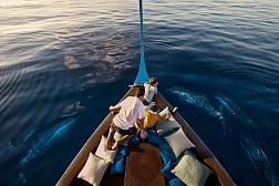 Chương Trình  HÀ NỘI - SINGAPORE - MALDIVES 5N5Đ