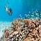 Maldives – điểm đến lí tưởng nhất hành tinh