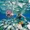 Snorkeling – trải nghiệm bơi với kính và ống thở khi lặn biển Maldives