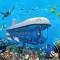 Thiên đường du lịch Maldives- lựa chọn nghỉ dưỡng hàng đầu thế giới