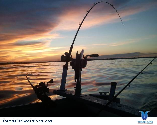 Câu cá hoạt động không thể thiếu khi du lịch Maldives - Ảnh 3