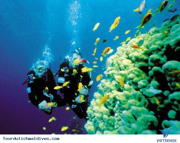 Kinh nghiệm bỏ túi cho tuần trăng mật của các cặp đôi đi du lịch Maldives - Ảnh 2