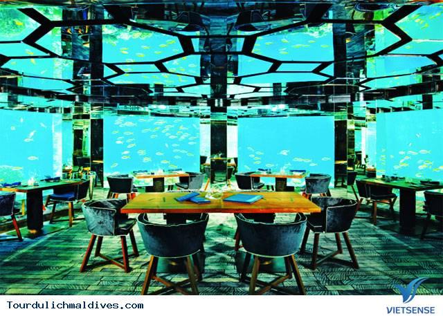 Khám phá lòng đại dương huyền ảo từ nhà hàng dưới nước tại Maldives - Ảnh 2