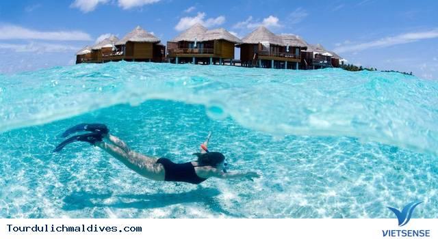 Maldives cấm du khách mang theo đồ chơi tình dục - Ảnh 3