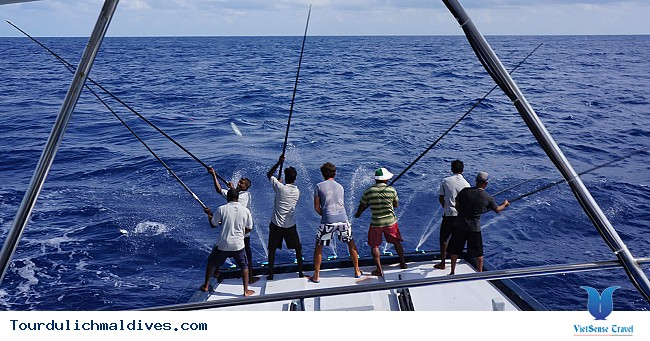 Câu cá hoạt động không thể thiếu khi du lịch Maldives - Ảnh 2