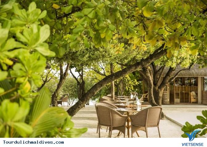 Cocoa Island Resort đốn tim dân nghiền du lịch - Ảnh 20