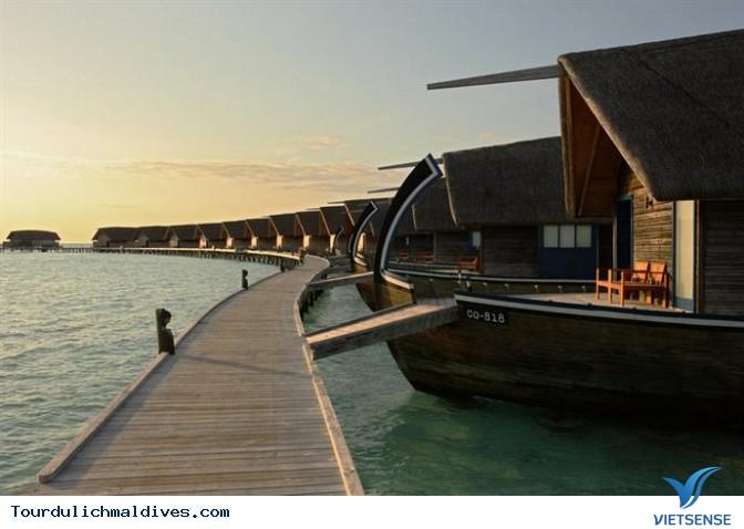 Cocoa Island Resort đốn tim dân nghiền du lịch - Ảnh 4