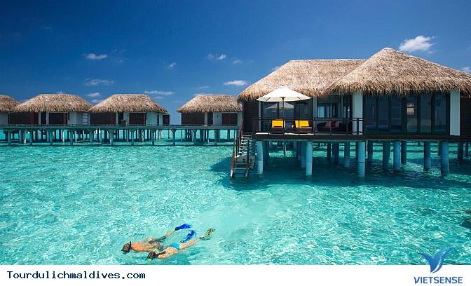 Hãy đến Maldives ngay khi có thể - Ảnh 2