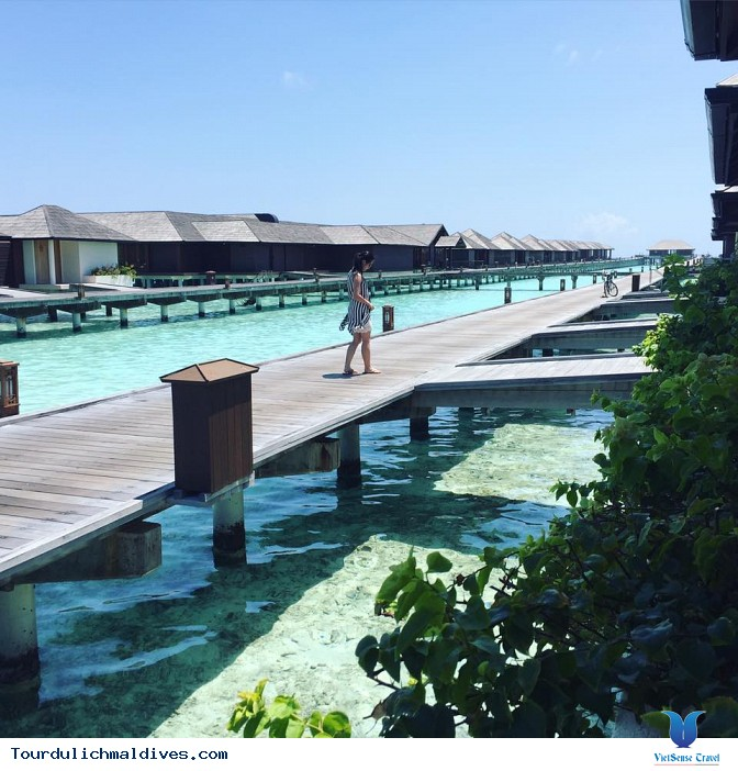 Hình ảnh chân thực về chuyến du lịch Maldives 27/2 - Ảnh 21