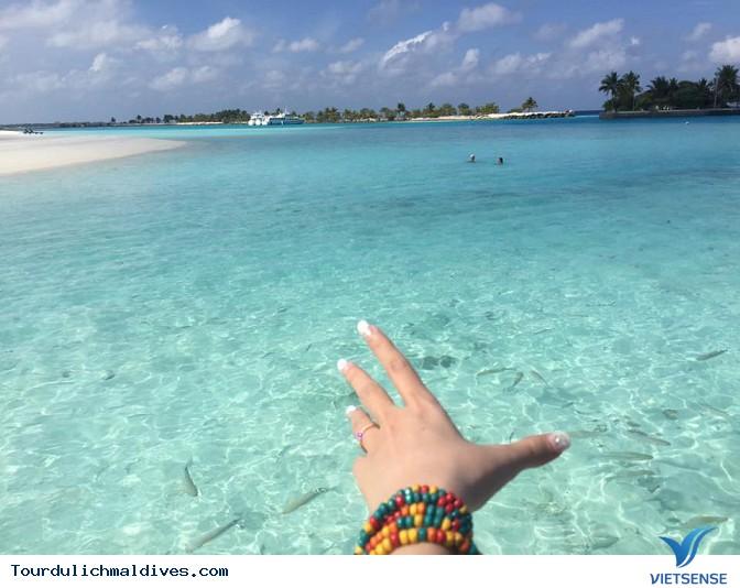 Hình ảnh chân thực về chuyến du lịch Maldives 27/2 - Ảnh 20
