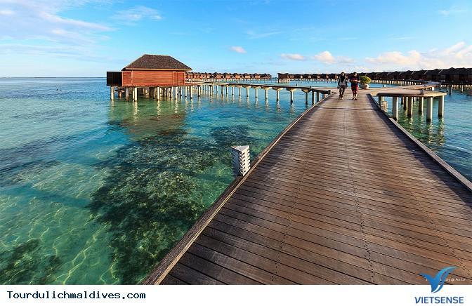 Khám phá dấu tích nền Phật giáo cổ tại Maldives - Ảnh 3