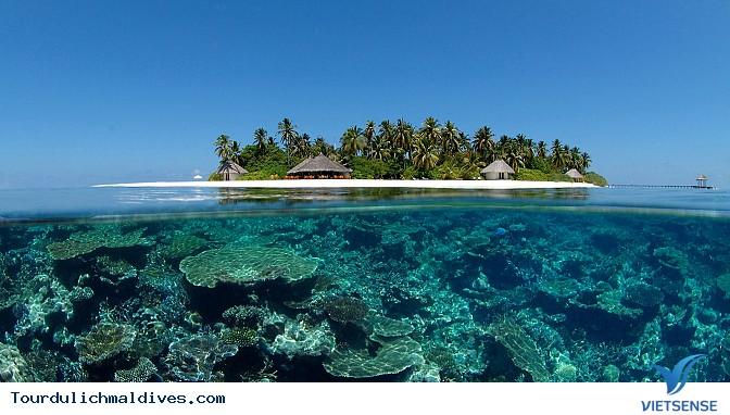 Khám phá dấu tích nền Phật giáo cổ tại Maldives - Ảnh 2