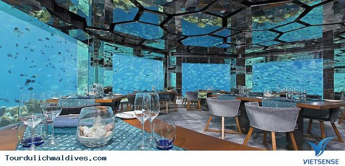 Khám phá lòng đại dương huyền ảo từ nhà hàng dưới nước tại Maldives - Ảnh 1