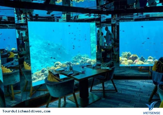 Khám phá lòng đại dương huyền ảo từ nhà hàng dưới nước tại Maldives - Ảnh 3