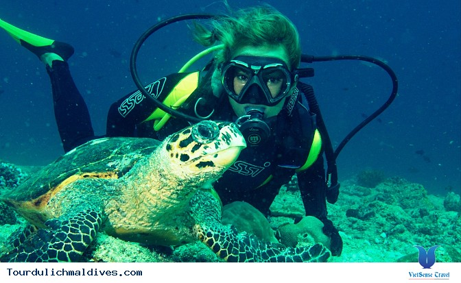 Kinh nghiệm mua sắm khi đi du lịch tới thiên đường đảo Maldives - Ảnh 3