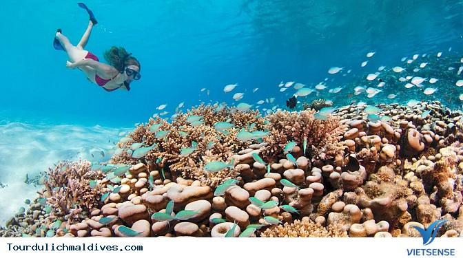 Maldives – điểm đến lí tưởng nhất hành tinh - Ảnh 2
