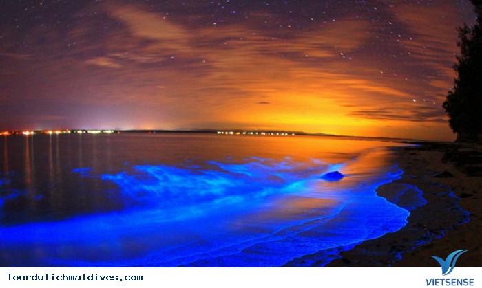 Khám phá Maldives sôi động và huyền ảo về đêm - Ảnh 5