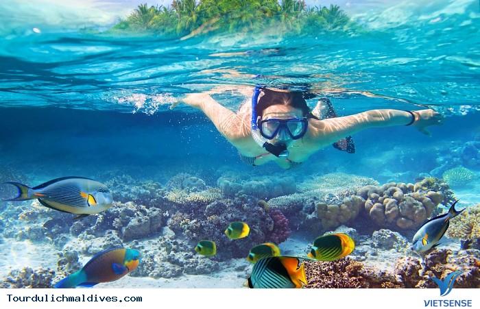 Snorkeling – trải nghiệm bơi với kính và ống thở khi đi du lịch Maldives - Ảnh 1