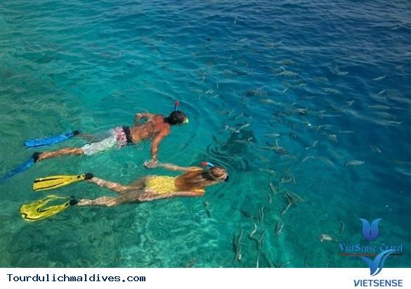 11 Ly Do Khien Ban Nen Du Lich Den Maldives 1 Lan Trong Doi - Ảnh 9