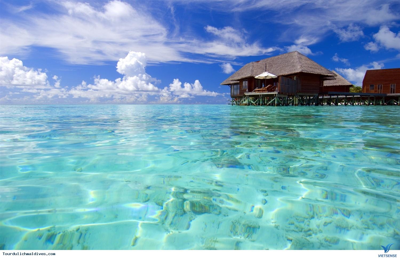 11 lý do khiến bạn nên du lịch Maldives một lần trong đời - Ảnh 8