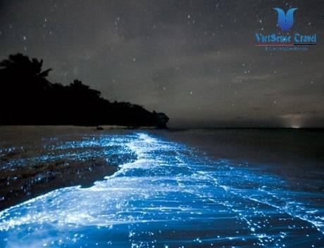 Bai Bien Phat Sang Tai Maldives - Ảnh 1