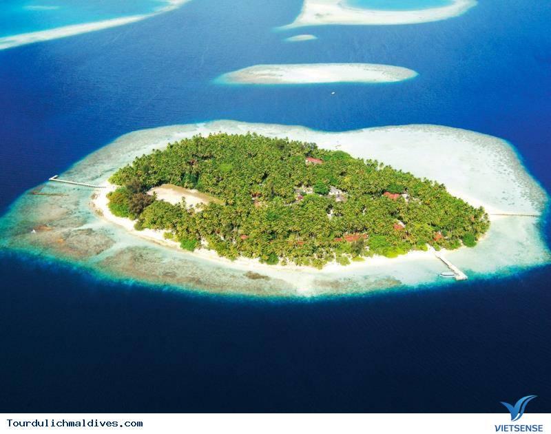 Biyadhoo Island Resort,biyadhoo island resort