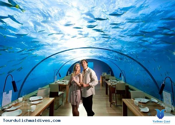 Chiêm ngưỡng khám phá nhà hàng độc dưới nước ở Maldives - Ảnh 4