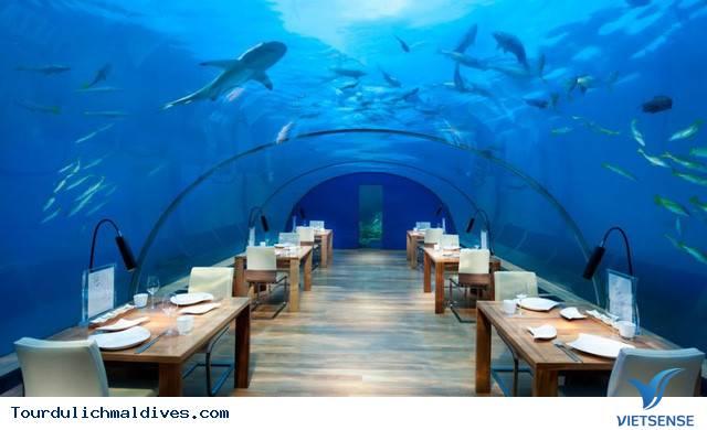 Chiêm ngưỡng khám phá nhà hàng độc dưới nước ở Maldives - Ảnh 1
