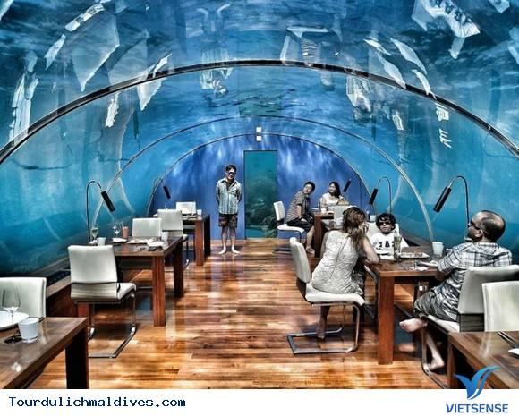 Chiêm ngưỡng khám phá nhà hàng độc dưới nước ở Maldives - Ảnh 2