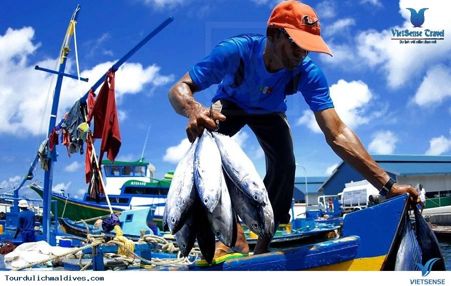 Chợ Cá Male - Ảnh 1