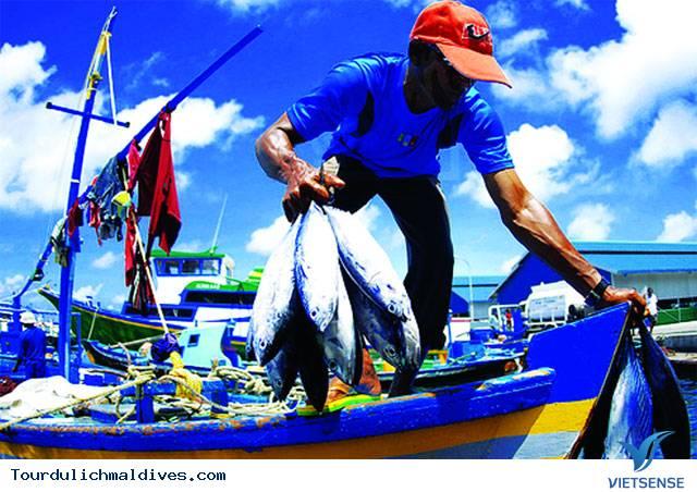 Cùng trải nghiệm nhiều điều thú vị tại lễ hội ngư dân ở Maldives - Ảnh 1