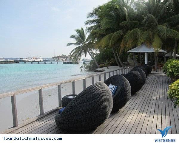Du lịch Maldives  khám phá chốn bồng lai tiên cảnh - Ảnh 5