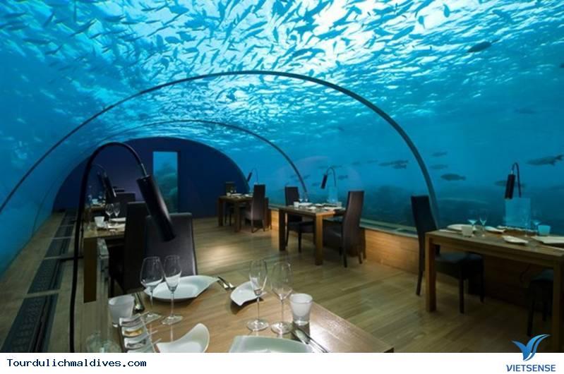 Huvafen Fushi khách sạn đẹp lung linh dưới nước tại Maldives ,huvafen fushi khach san dep lung linh duoi nuoc tai maldives