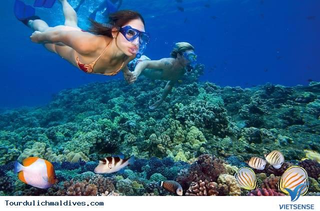 Những điểm thú vị hấp dẫn du khách nhất tại Maldives