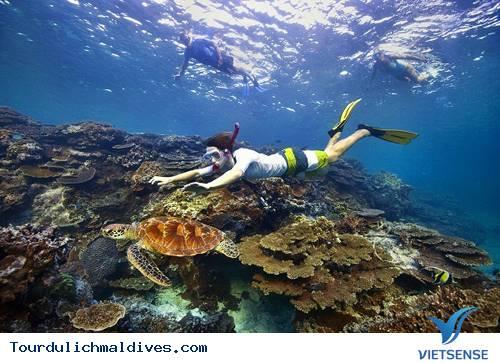 Những Trải Nghiệm Không Nên Bỏ Lỡ Tại Thiên Đường Maldives - Ảnh 2