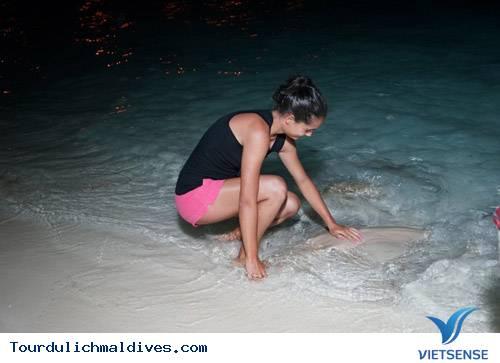 Những Trải Nghiệm Không Nên Bỏ Lỡ Tại Thiên Đường Maldives - Ảnh 6