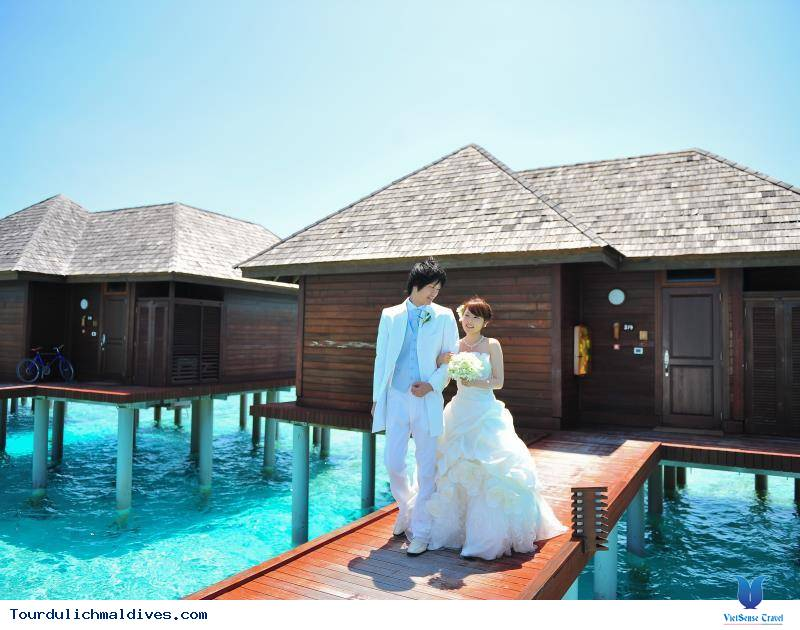 Olhuveli Beach and Spa Resort ,olhuveli beach and spa resort