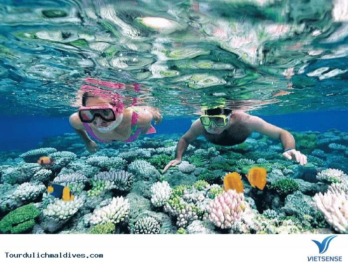 Snorkeling – trải nghiệm bơi với kính và ống thở khi đi du lịch Maldives