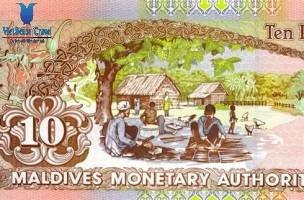 Tiền Tệ Tại Maldives - Ảnh 1